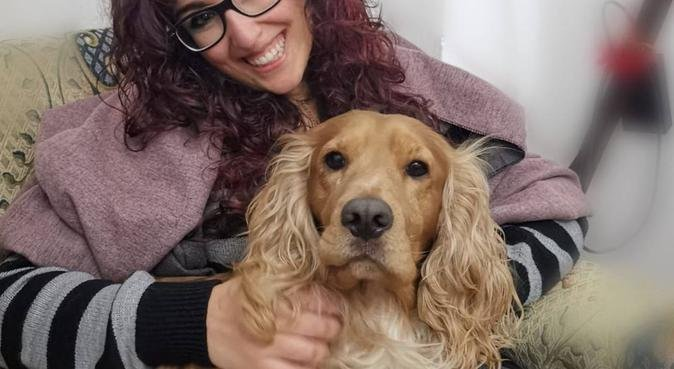 Dogs friend in Cardiff, dog sitter in Cardiff