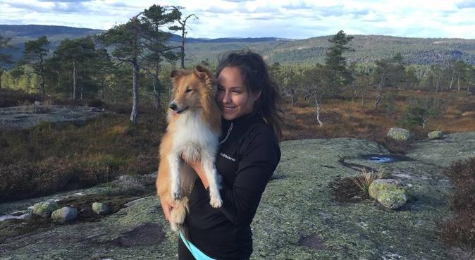 Bytur, eller skogstur - Et lite eventyr hver gang, hundepassere i oslo