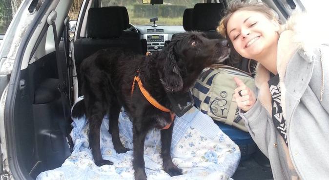 Nounou des grands et des petits !, dog sitter à Biscarrosse