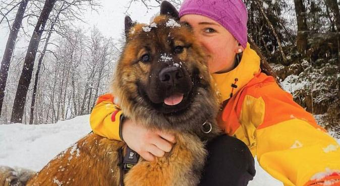 Sporty lærerstudent som elsker hunder!, hundepassere i Trondheim