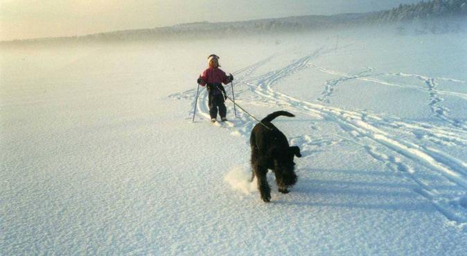 Kos, lek og trening :), hundepassere i Raufoss