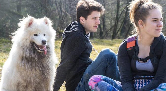 Hondenoppasser met diploma, hondenoppas in Breugel