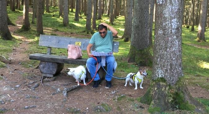 Country and seaside walks., dog sitter in Canterbury, UK