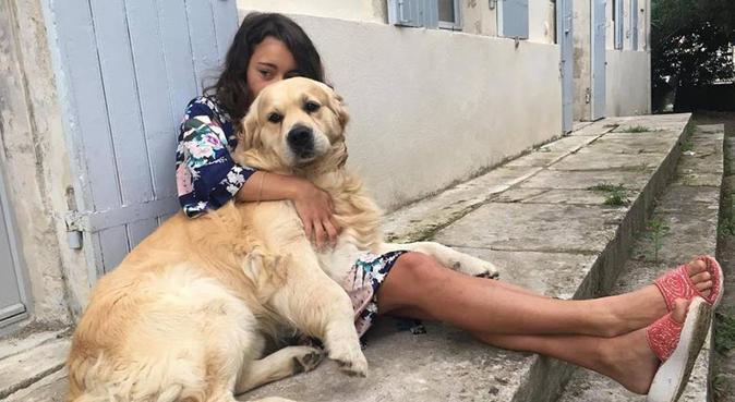 Tout le chien est dans son regard (P.Valéry), dog sitter à Paris