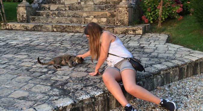 Le paradis des toutous, dog sitter à Choisy-le-Roi