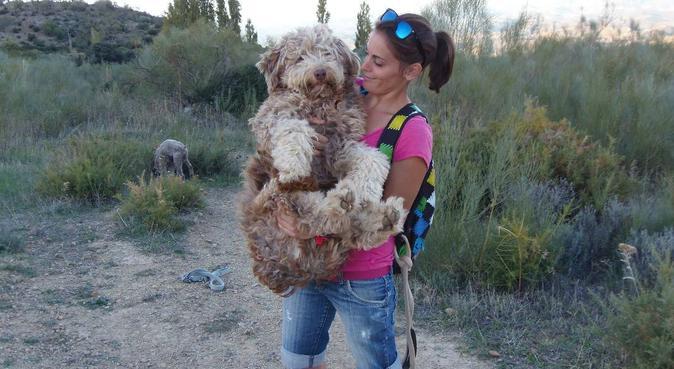 Que tu perro no se quede sin paseo!!!, canguro en Chiclana de la Frontera