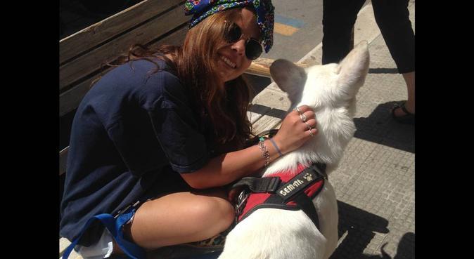 Amore verso i 4 zampe ❤️, dog sitter a Bari