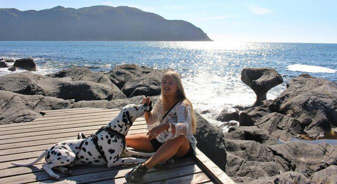 Elsker hunder!, hundepassere i Olsvik