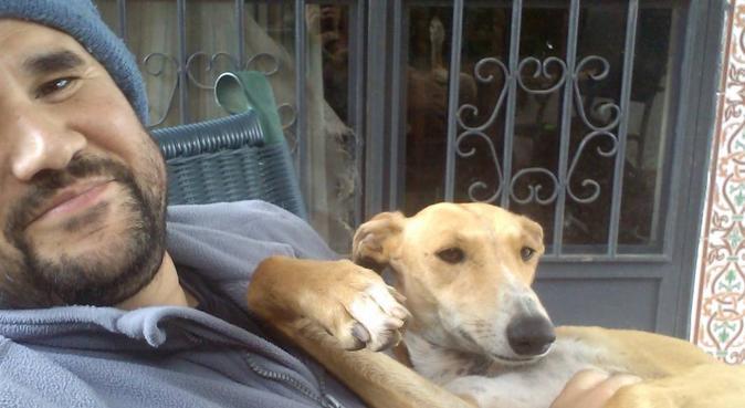 Tu perro estará muy bien aquí, canguro en Sevilla