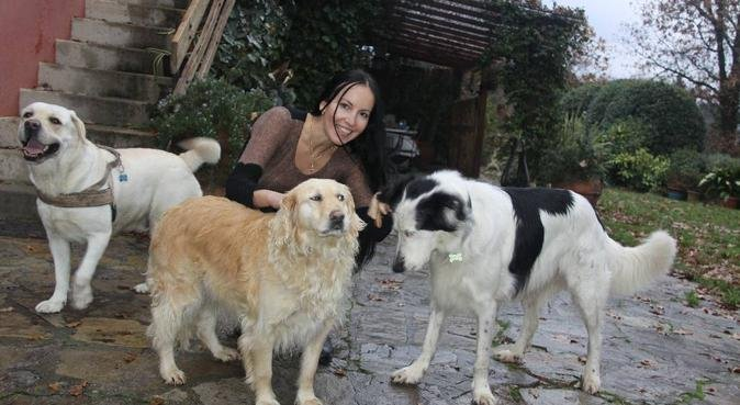 Il vostro cane con me, potete essere tranquilli!, dog sitter a Lucca