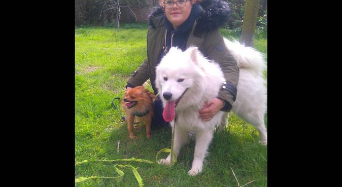Pour un séjour joueur et câlins, dog sitter à Nîmes