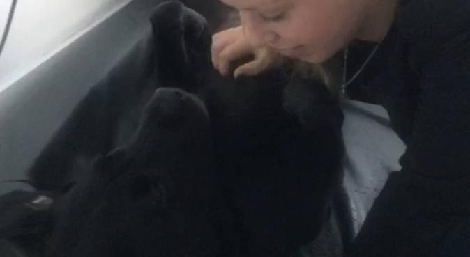 Lieve verzorgen voor uitlaten en oppassen, hondenoppas in Leusden