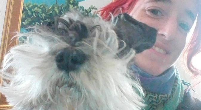 Paseadora de perros Almería, canguro en Almería