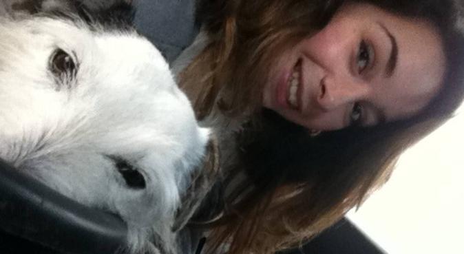 Etudiante sportive qui défoulera vos animaux!, dog sitter à LYON