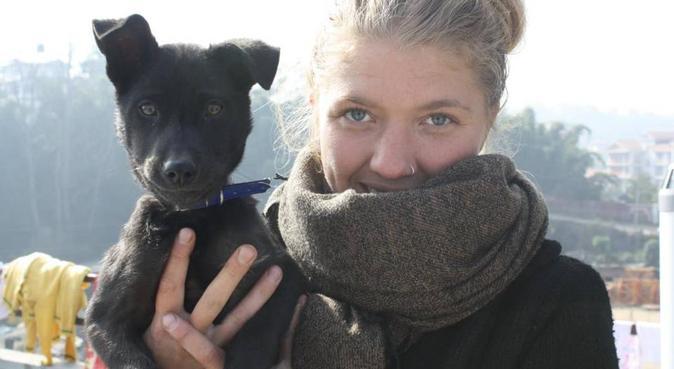 Flexibel hundpassning på Ängö, hundvakt nära Kalmar