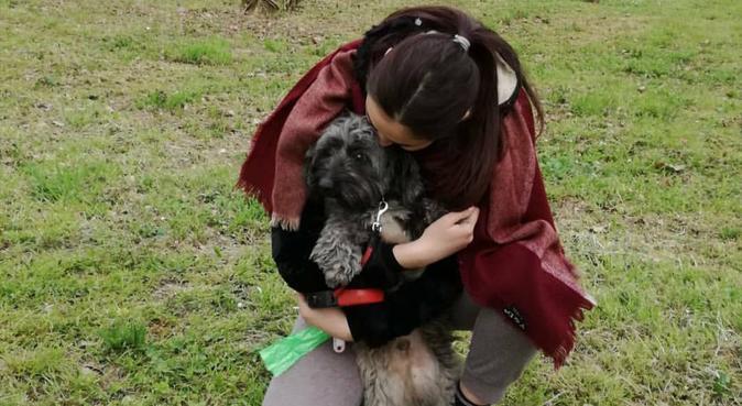 Coccole e tante passeggiate, dog sitter a Bologna