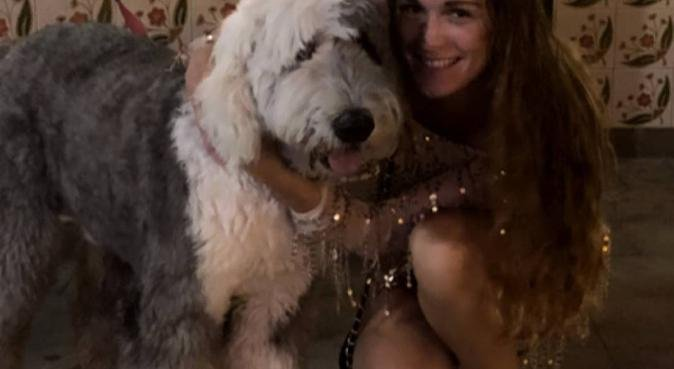Hondenoppas in hartje Den Haag, hondenoppas in Den Haag