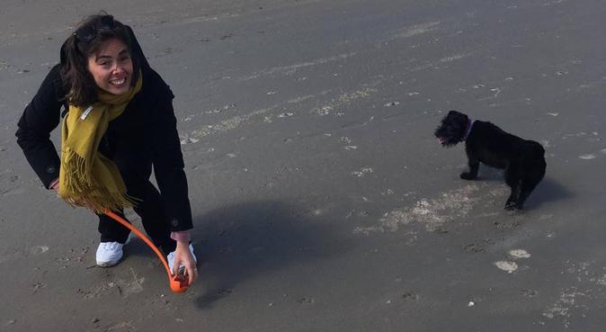 Betrouwbare oppas voor jouw liefste hondenmaatje!, hondenoppas in Amsterdam