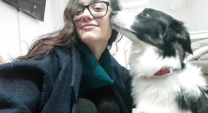 Hogar de sonrisas caninas, canguro en Madrid