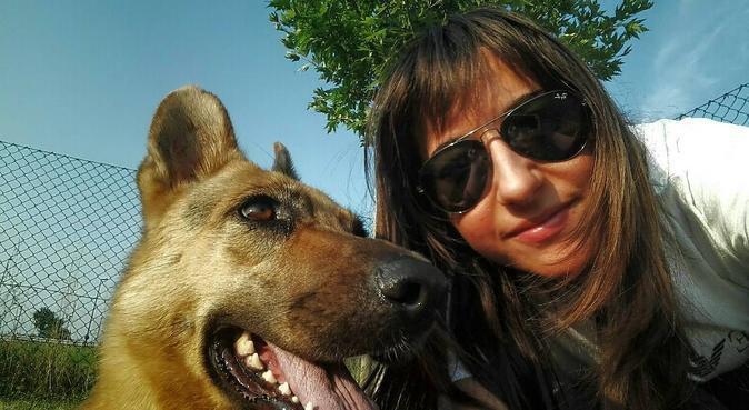Passeggiate, coccole per i nostri amici a 4 zampe!, dog sitter a Albignasego