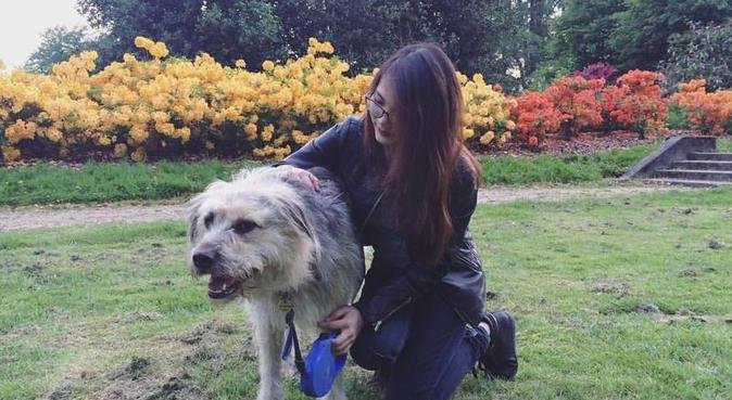 Dog loving female student in Arnhem, hondenoppas in Arnhem, Nederland