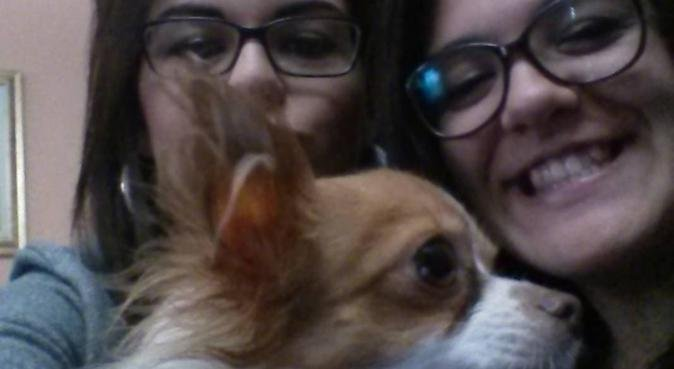 Divertimento e coccole con un'amante degli animali, dog sitter a Padova
