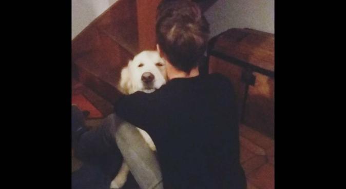 La passion des animaux., dog sitter à Sassenage