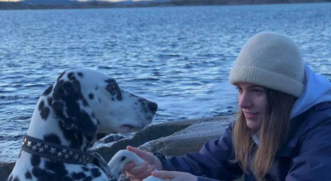 Tar med hunden på lange og varierte turer, hundepassere i Husøysund
