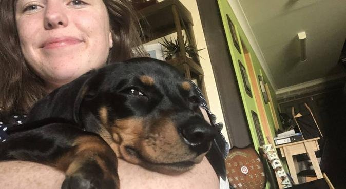 Australian GAP Student - Young and Friendly!, dog sitter in Chichester, UK