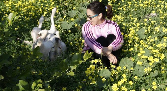 Paseos saludables, canguro en Murcia