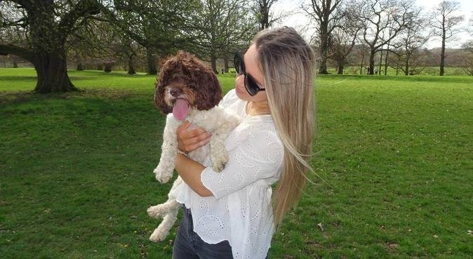 Doggy heaven and cuddles in Chesterfield, dog sitter in Derbyshire Dales District, UK