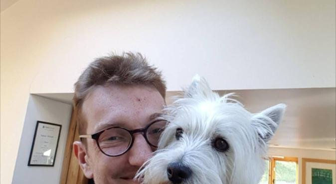 Dog sitting and walking in the centre of Botley!, dog sitter in Botley
