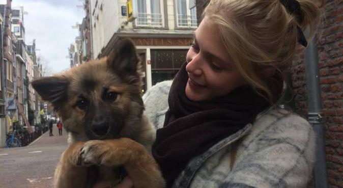 Flexibele en betrouwbare hondenliefhebber!, hondenoppas in Amsterdam, Netherlands