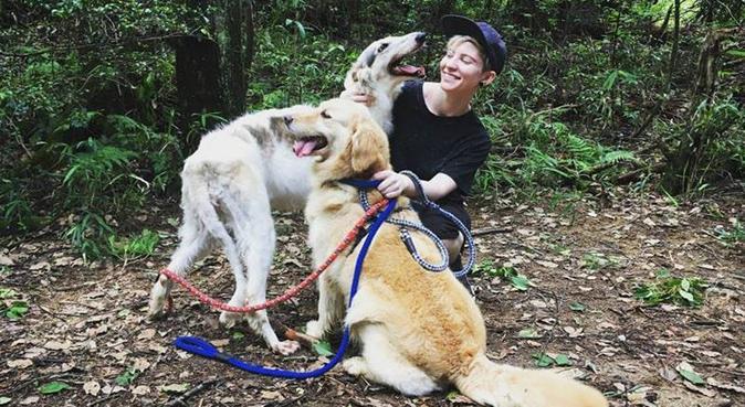 Experienced, Energetic, Easy-going Dog Walker, dog sitter in York