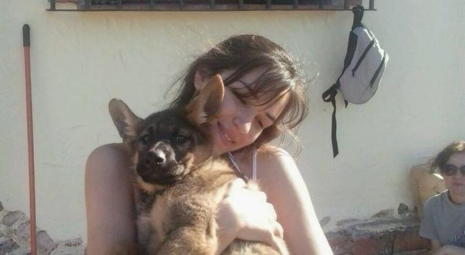 Puro amor para perros, dog sitter à Marbella