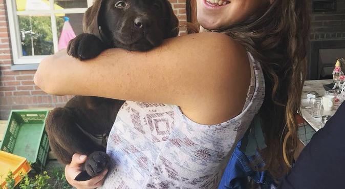 Honden liefhebber, hondenoppas in Berkel en Rodenrijs