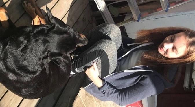 Experienced dog-sitter for walks in Stockholm, hundvakt nära Huddinge, Sweden