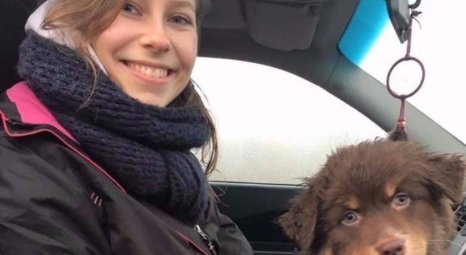 Etudiante vétérinaire garde vos chiens à Lille, dog sitter à La Madeleine