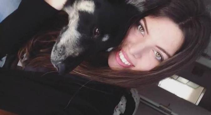 Il paradiso per il tuo cane, dog sitter a Bologna