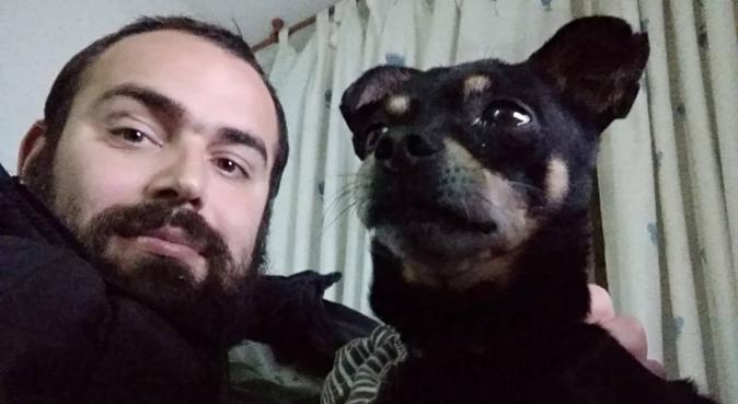 Chico amante de los perros se ofrece como cuidador, canguro en Cádiz