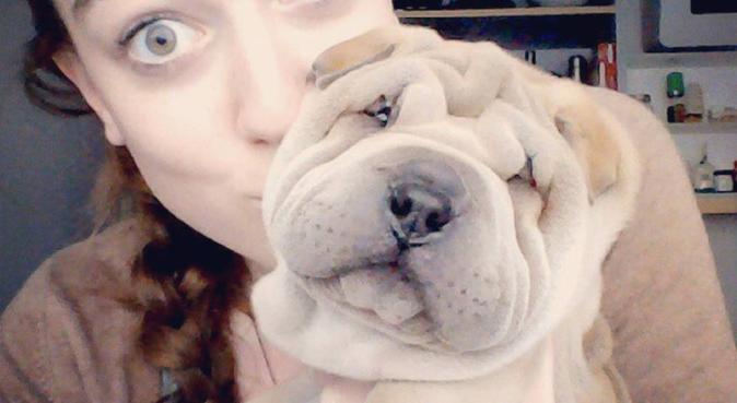 ¡Estudiante de veterinaria cuida a tu mascota!, canguro en Murcia