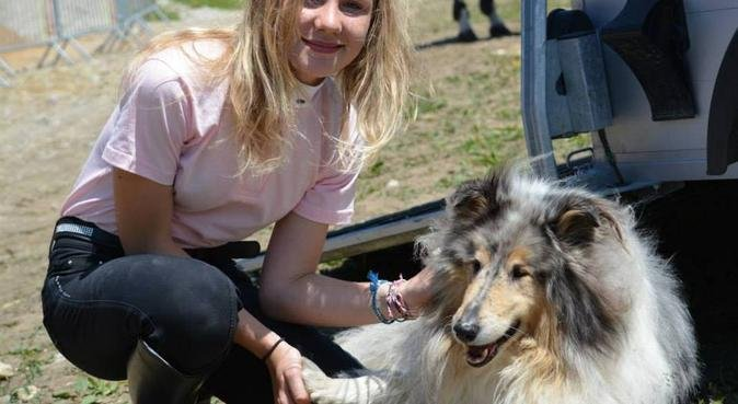 La maison cocooning, dog sitter à Annemasse