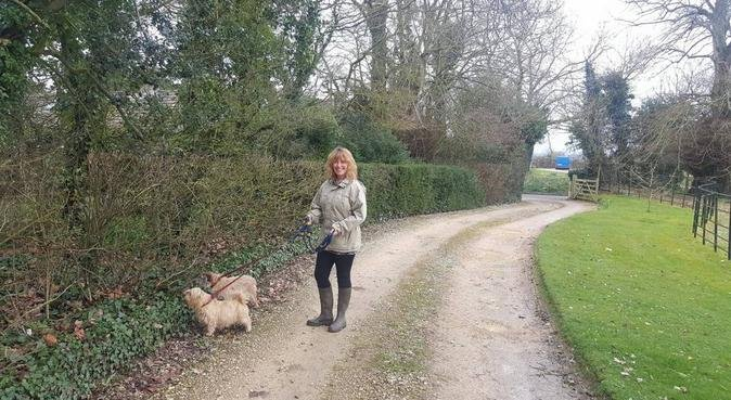Sitting In For You, dog sitter in Swindon, UK