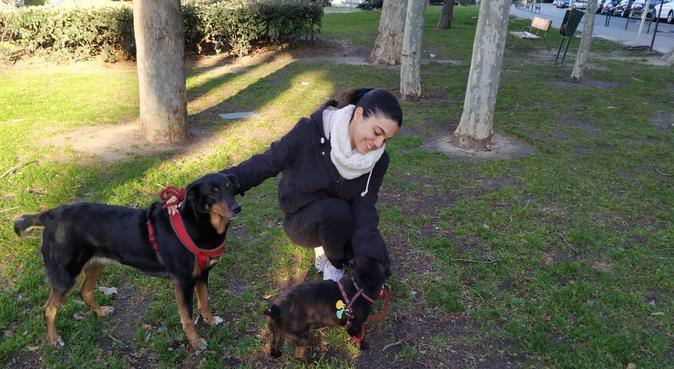 Buena compañía y felicidad para tu mascota, canguro en Madrid
