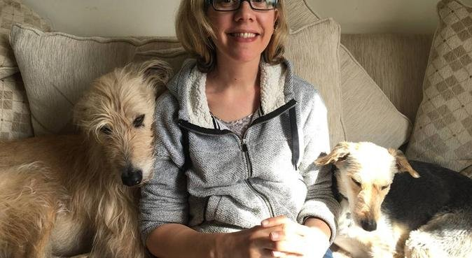 Countryside comfort for your dogs enjoyment!, dog sitter in Stoke-on-trent