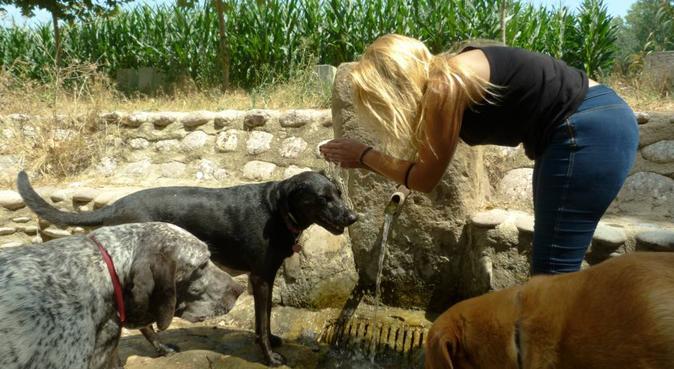¡Total dog lover!  Canguro y educadora, 2 en 1 :-), canguro en Barcelona