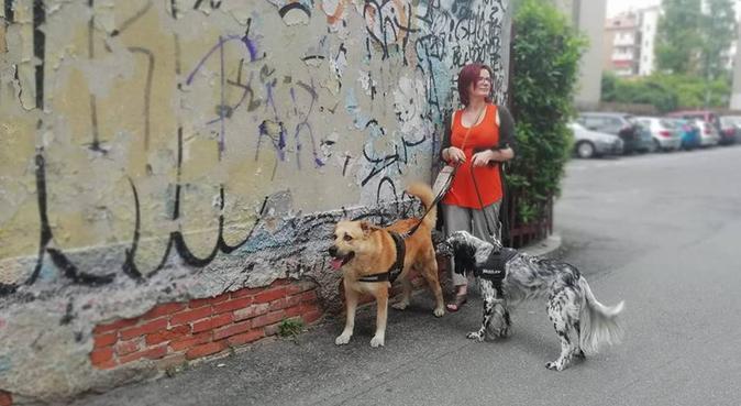 Con me il tuo cane non sarà mai solo!, dog sitter a Milano