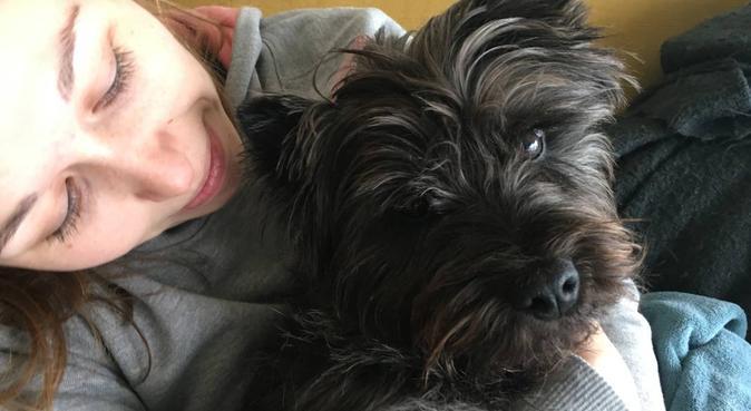 Vacances bretonnes chez Cédric et Mélanie, dog sitter à Rennes
