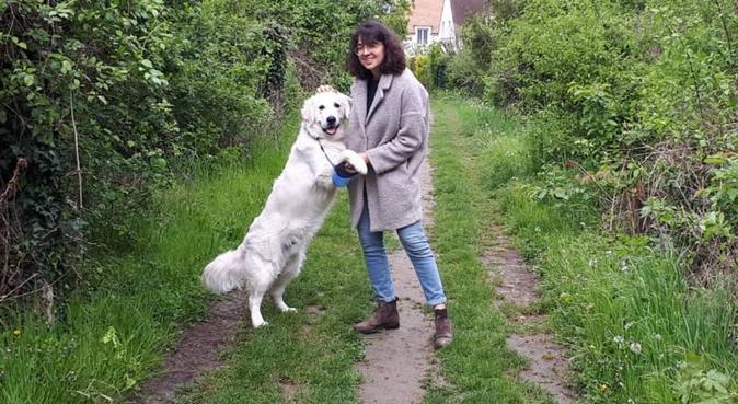 Dogsitteuse dans les environs de St Germain en L, dog sitter à Mareil Marly