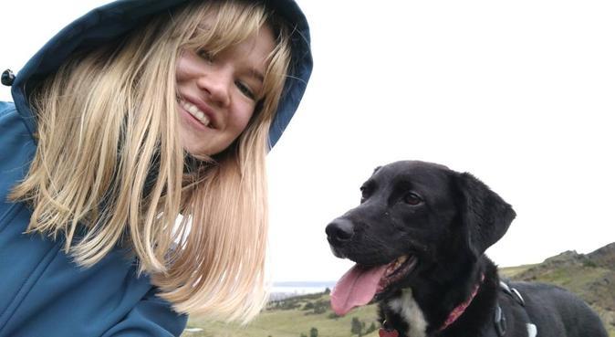 Holyrood Dog Nanny, dog sitter in Edinburgh